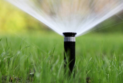 When and how to water the garden in the summer?