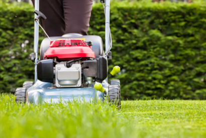 Lawn: all you need to know about maintaining your lawn!