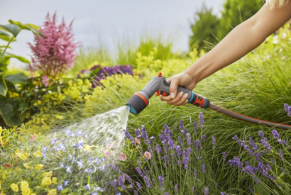 Watering the garden in summer: our tips