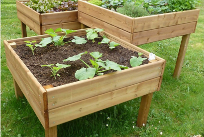 Elevated vegetable garden: why plant high?
